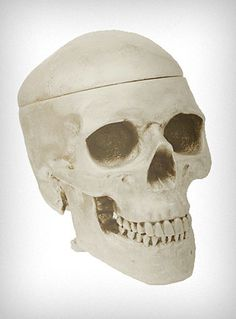 Hide all of your wicked little secrets in this incredible cast resin Skull Box! Roughly the size of an actual human skull, the top (lid) of the skull can be removed to reveal a large space on the interior - the perfect place to store candy, money, and other bits  baubles. A gorgeous addition to any quirky or sophisticated home decor. Antique White Finish.