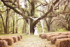 we love this ceremony site under oak tree. see all the charming details of this Southern wedding here: http://www.mywedding.com/articles/hoke-and-jessis-romantic-vidalia-ga-wedding-by-bella-jay-photography/