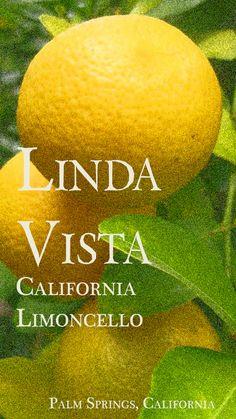 My limoncello label.