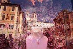Rome, Italy Rome Italy, Photography, Photograph, Photo Shoot, Fotografie, Fotografia, Rome