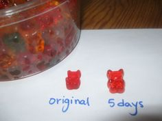 Drunken Gummies (Vodka-Infused Gummi Bears)
