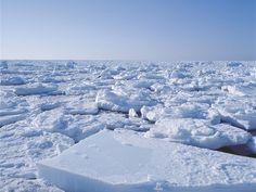 知床ネイチャーオフィス松田さんが語る オホーツクの流氷のココがすごい! | オホーツクまち発見!!旅紀行 | 北海道ファンマガジン