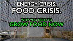 Food Now, A Food, Energy Crisis, Jesus Is Coming, Organic Lifestyle, Food System, Emergency Preparedness, Survival, Circular Economy