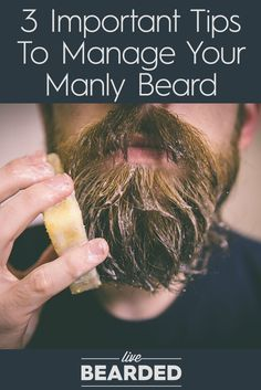 3 Important Tips To Manage Your Manly Beard | Bearded Man | Beard Care Tips |