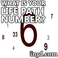 how to find your life path number