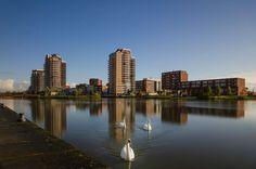 Nieuw in mijn Werk aan de Muur shop: Zoetermeer Oosterheem Skyline en Zwanen