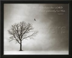 Psalm 37 Be Still Before the Lord Art Poster Print Posters - AllPosters.ca