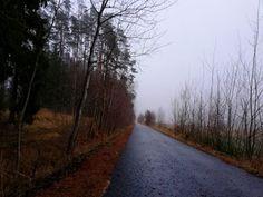 Aug in Aug - Der Vajk und seine Gedankenwelt Country Roads, Landscape