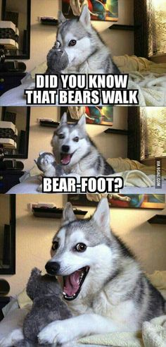 I will be waiting for more bear puns