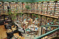 books & plants | Libreria el Pendulo in Mexico