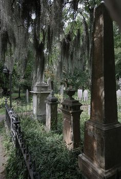 Jacob's Alley Cemetery | Flickr - Photo Sharing! #Charleston S.C. Supposedly Poe's Annabelle Lee is buried here.