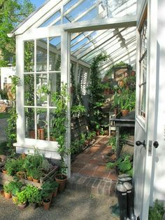 Love this greenhouse. How can you not have a green thumb here? #home #garden