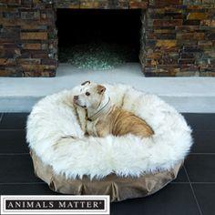 Animals Matter® Shag Puff™