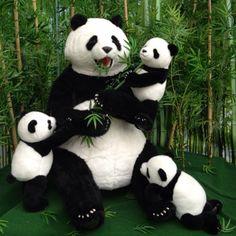 pandas are her fav! Cute Panda Baby, Baby Panda Bears, Cute Puppies, Cute Dogs, Cute Babies, Cute Little Animals, Cute Funny Animals, Cute Panda Drawing, Panda Images