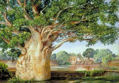 African Baobab Tree in the Princess's Garden at Tanjore, India by Marianne North 1878