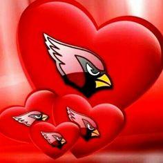 Minnesota Vikings Football, Cardinals Football, Nfl Arizona Cardinals, Louisville Cardinals, Bird Pictures, Birds Pics, Az Cards, Bottle Cap Art, Cardinal Birds