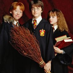 Young Ron, Harry and Hermione.