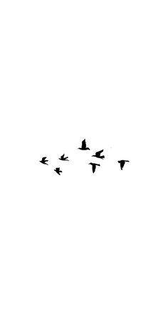 Birds / Find more #Minimalistic #iPhone + #Android #Wallpapers and #Backgrounds…