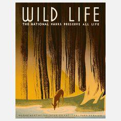 Wildlife WPA   Frank S Nicholson print