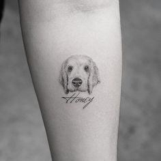 dog tattoo Small Tatoo is part of Best Dog Tattoos Designs And Ideas Designatattoo - Honey k tattoo Small Dog Tattoos, Mini Tattoos, Trendy Tattoos, Body Art Tattoos, Tattoos For Women, Sleeve Tattoos, Tatoos, Tattoos Skull, Pet Tattoos