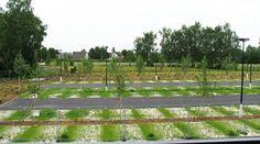 Parking Space, Site Officiel, Rouen, Le Site, Vineyard, Outdoor, Public Spaces, Landscape Planner, Urban