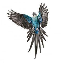 Spix Macaw captured in flight. © Andrew Zuckerman