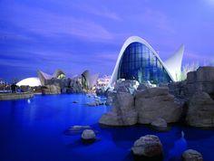 L'Oceanogràfic de Valencia, We love blue #CCElSaler
