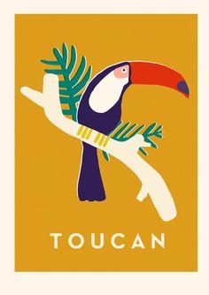 Naomi Wilkinson, toucan, illustration, bird, leaves