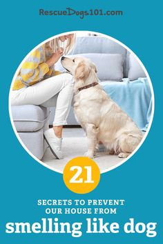 Does your house smell like dog? Here are 21 of my secrets to cleaning the floors, air, furniture and of course your dog >>. What is your secret? Puppy Potty Training Tips, Dog Training, Rescue Puppies, Dog Smells, Dog Pee, Cute Dog Photos, Dog Facts, Dog Activities, Dogs And Kids