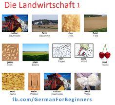 German For Beginners: die Landwirtschaft