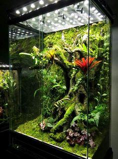 Het idee van een soort boom die mooi de hoogte in gaat en als frame dient voor beplanting. Heel gaaf! Een klein waterpoeltje onderin en voila.
