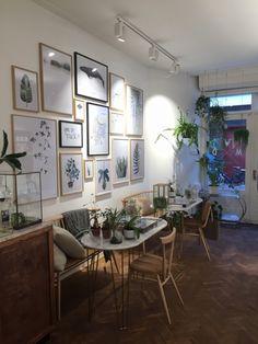 My Deer's Store, Schagchelstraat 12, 2011 HX Haarlem. Mooiwatplantendoen.nl