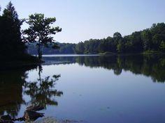 The Best Lake in Illinois:  Cedar Lake