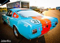 Gulf Mustang