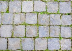 stone brick road with moss