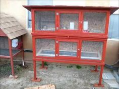 "This is a cage I made to house 20 Coturnix quails and I thought I'd post some info on it to help any other DIYers out there plan. Below is a materials list, which totaled $175 from Home Depot at the time of this video.     -3 sheets of 1/2"" OSB plywood  -14 furring strips (1""x2"")  -4 eight foot 2""x2""s  -2'x25' roll of 1/2"" steel mesh/hardware cloth  -..."