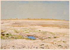 I'd love an Adolf Jentsch painting of Namibia in my home....