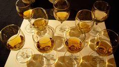 Des scientifiques écossais ont annoncé ce mardi avoir mis au point une langue artificielle qui servirait à distinguer les bons whiskies des mauvais. Un moyen d'établir l'authenticité de n'importe quel pur malt et ainsi de lutter contre les produits contrefaits.