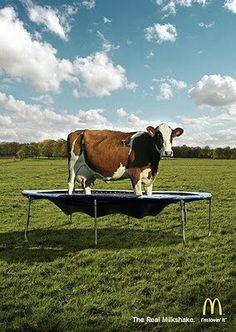 Mcdonald's milk shake ad :)