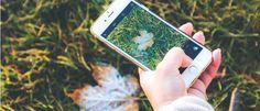 75 bud på flotte gratis billeder til din hjemmeside - Frumik