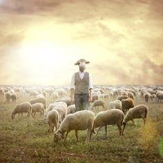 The Shepherd. Shawn Van Daele Surreal Photography