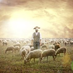 The Shepherd. Shawn Van Daele Surreal Photography