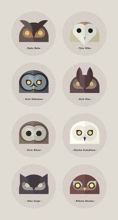 Geometry in the Moonlight - Owls of the World by Alessio Sabbadini //