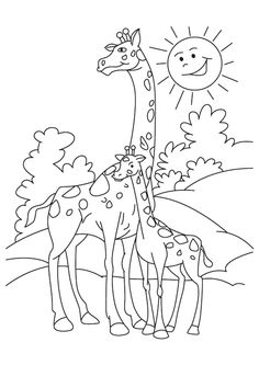 Giraffe color page, animal coloring pages, color plate, coloring ...