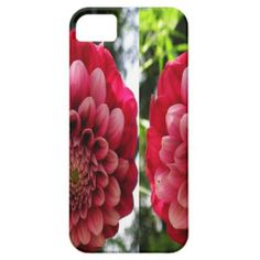 Purchase a new Aladdin case for your iPhone! Shop through thousands of designs for the iPhone iPhone 11 Pro, iPhone 11 Pro Max and all the previous models! Couple Cases, Flower Decorations, Iphone Case Covers, Birthday Ideas, Spiderman, Create Your Own, Rose, Flowers, Design