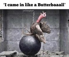 7 Hilarious Thanksgiving Memes That Are Guaranteed To Make You LOL - King Feed Scary Clown Meme, Scary Clowns, Funny Spongebob Memes, Funny Memes, Hilarious, Funny Thanksgiving Memes, Funny Patrick, Facts You Didnt Know, Reality Tv Stars