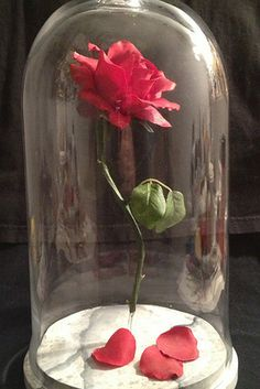 DIY Beauty and the Beast rose