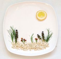 every-day-food-art-project-hong-yi