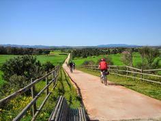 CICLISME | La ciutat compta amb importants recursos naturals com els Camins de ronda, les rutes per el Massís de l'Ardenya i les Gavarres on es pot fer senderisme o recorreguts en BTT.