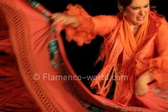 Flamenco :: Pastora Galvan in Metáfora, Festival de Jerez 2012. Photo by: Daniel Munoz